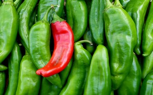 Green and red Chile peppers